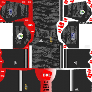Argentina 2019-2020 DLS/FTS Kits and Logo