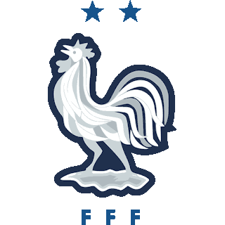 France Centenary 1919-2019 DLS/FTS Kits and Logo