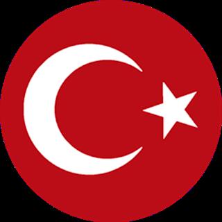 Türkiye Euro 2020-2019 DLS Formalar/Logo - Dream League Soccer