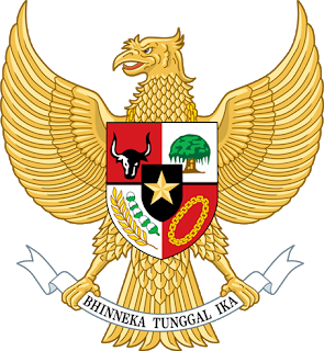 Dls-indonesia-kits-2020-2021 logo