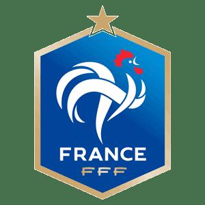 dls-france-kits-2017-logo