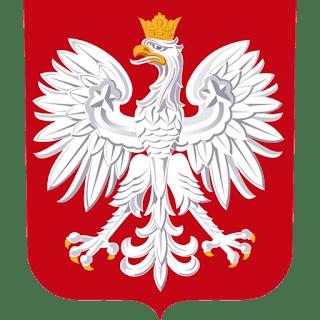 dls-poland-kits-2018-logo
