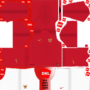 dls-indonesia-kits-2018-home