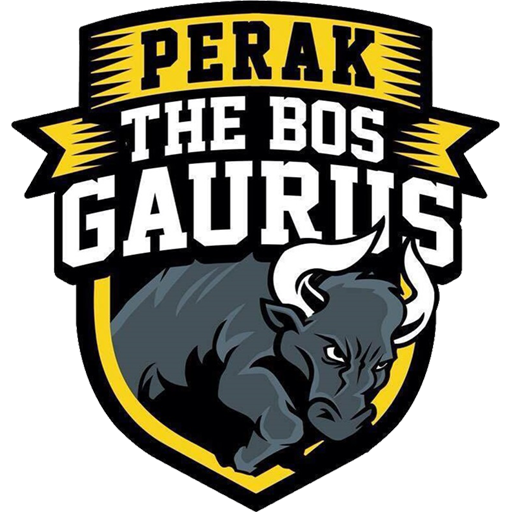 dls-perak-kits-2019-logo