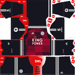dls-leicester-kits-2018-19-gkhome