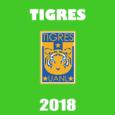 dls-tigres -kits-2018-cover