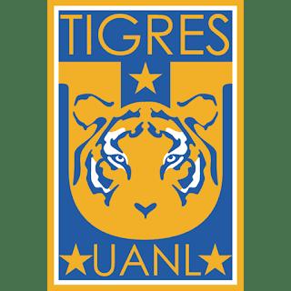 dls-tigres -kits-2018-logo