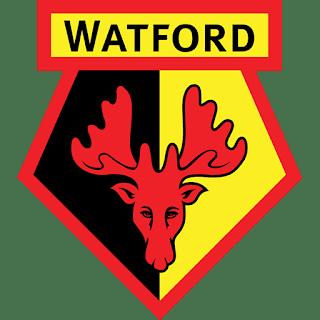 dls-watford-kits-2017-18-logo