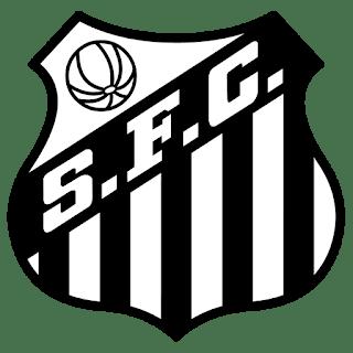 dls-santos-kits-2017-2018-logo